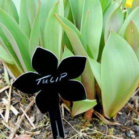 Plantenlabels - bloemen en planten