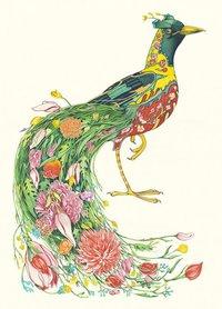 Wenskaart - paradijsvogel