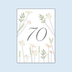 Wenskaart Daisies & Grass 70 Birthday