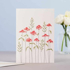 Wenskaart Echinacea