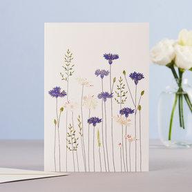 Wenskaart Cornflowers & Daisies