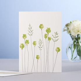 Wenskaart Poppyheads & Grass