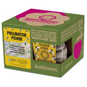 Zaadbommen - Pollinator Power
