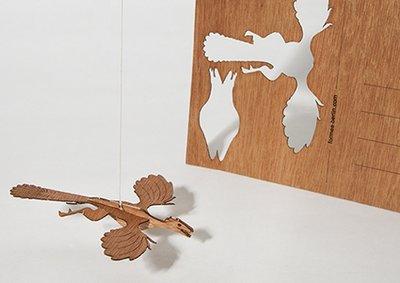 Houten kaart - archeopteryx