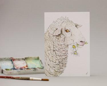 Wenskaart - Saisy sheep